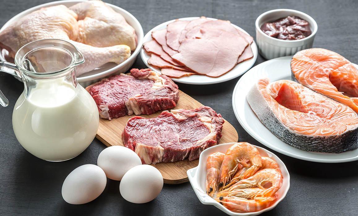Qualité et sources des protéines