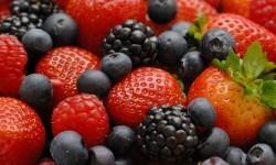 Antioxydants et Radicaux libres