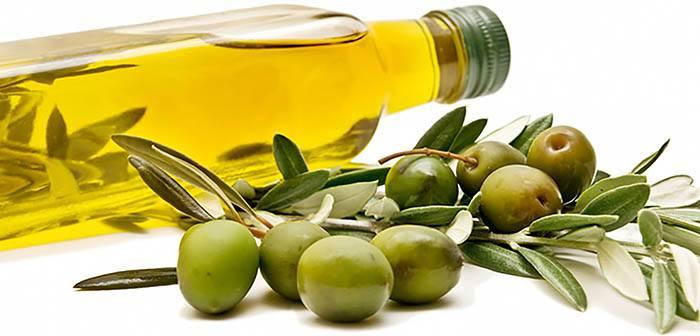 Bouteille d'huile d'Olive et olives : sources de lipides et graisses