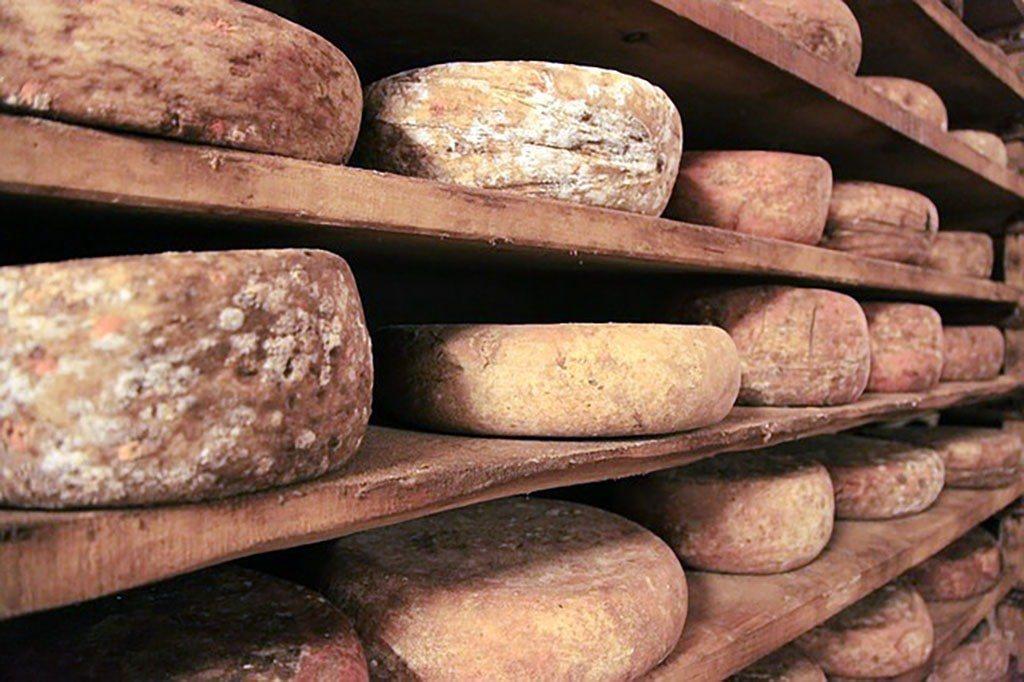 Un étale de fromages
