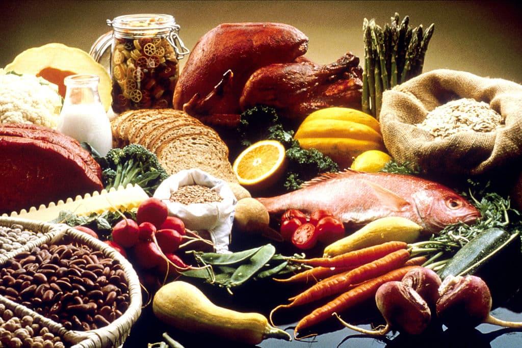 Aliments riches en protéines animales et végétales