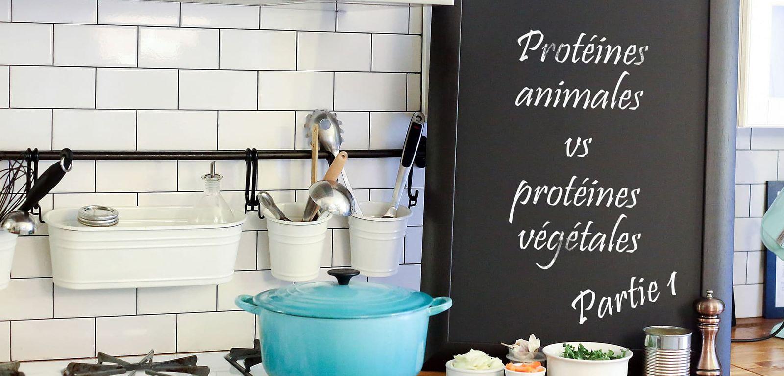 Protéines animales vs protéines végétales : Partie 1