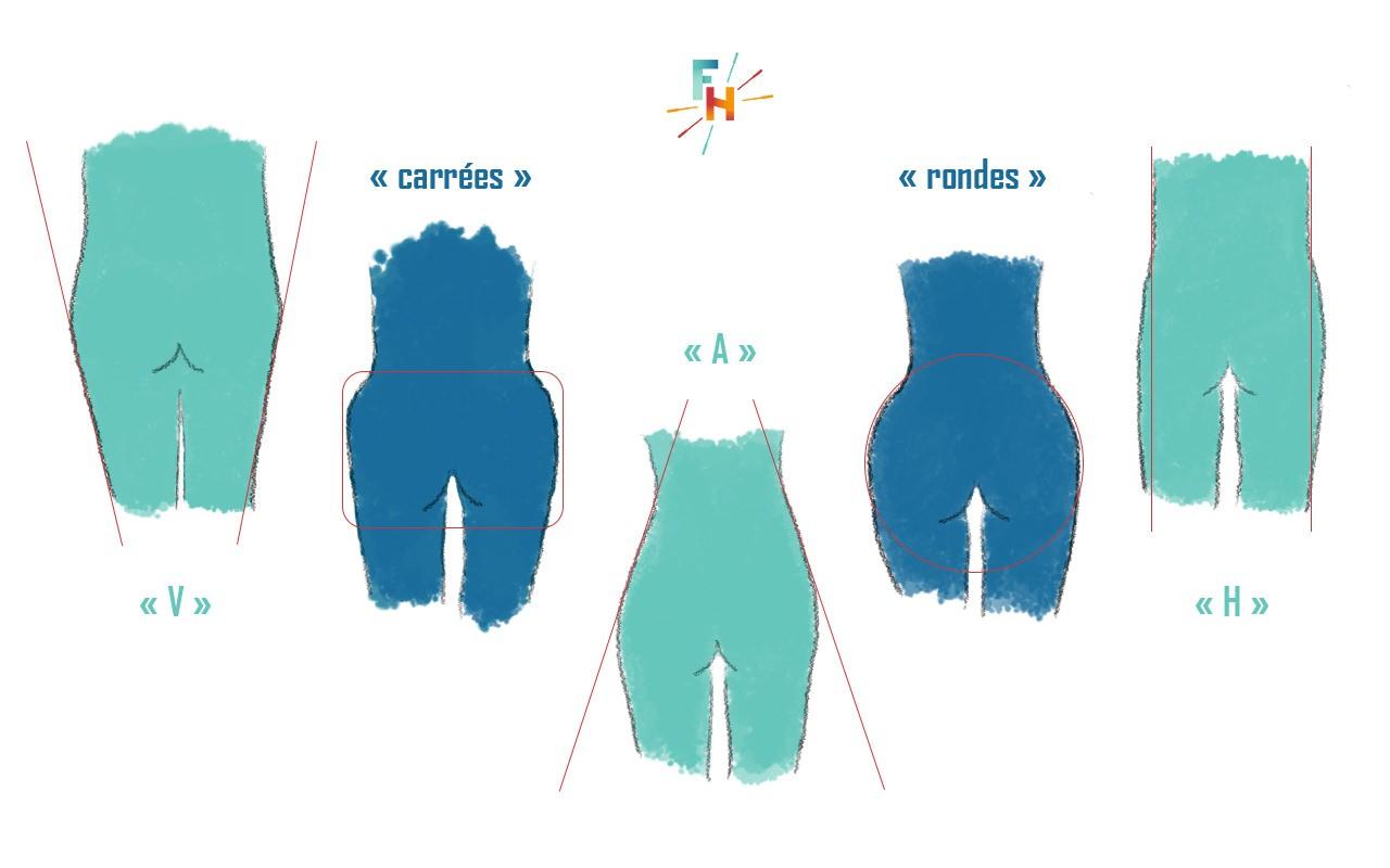 Formes des fesses et génétique
